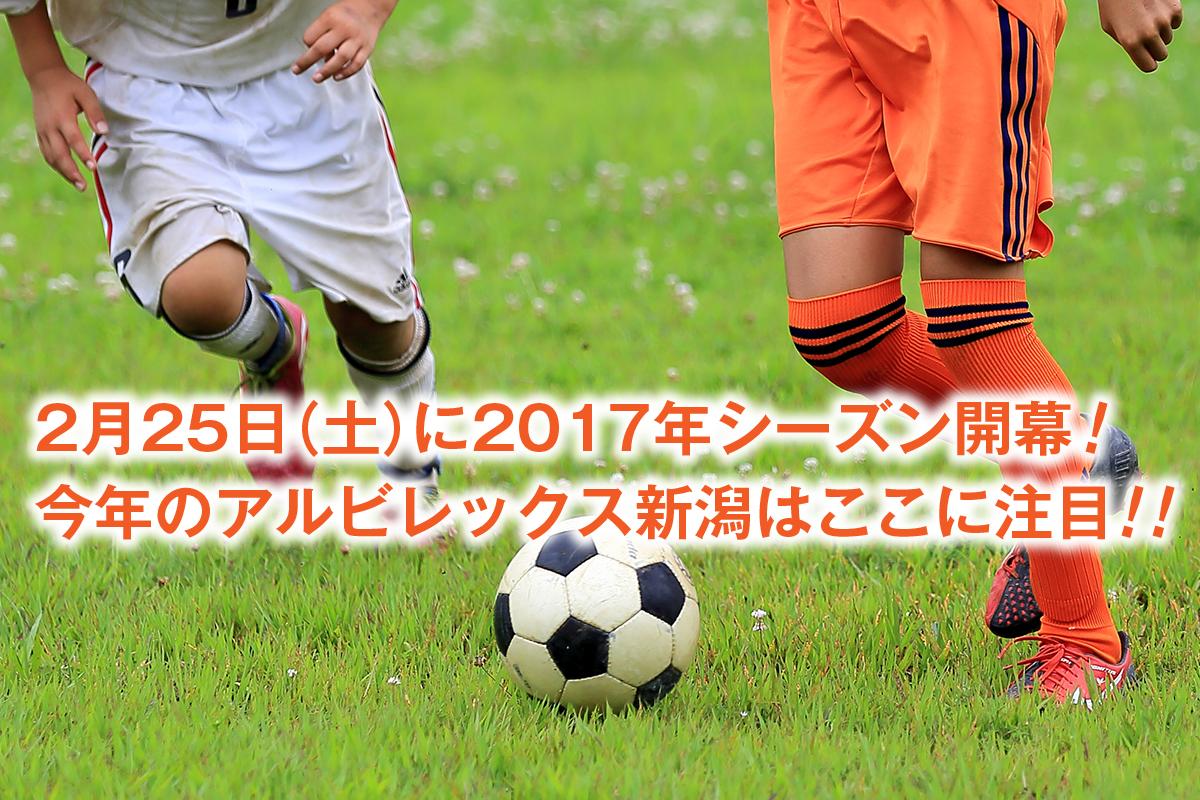 2017年のアルビレックス新潟はここに注目!
